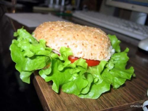 Сраньбургер