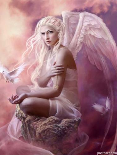 new_angels___03.jpg